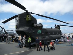 "Boeing CH-47D Chinook 2 • <a style=""font-size:0.8em;"" href=""http://www.flickr.com/photos/81723459@N04/28423681259/"" target=""_blank"">View on Flickr</a>"