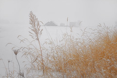 Another winter day (wdterp) Tags: winter snow farm rural grasses barn buildings bins
