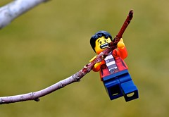 Out on a Limb (linda_lou2) Tags: 365the2018edition 3652018 day53365 22feb18 53365 365 toy project 365toyproject odc branch lego minifigure minifig tree