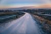 Empel - Kanaalpark 3530 (Ingeborg Ruyken) Tags: dropbox vorst februari winter frost february kanaalpark flickr snow sneeuw morning zon 500pxs empel tree koud ice bevroren boom ijs natuurfotografie sun ochtend cold frozen