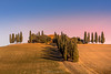 Tuscany Autumn (Ding Ying Xu) Tags: europe italy tuscany rural fields rollinghills hill autumn fallcolors countryside cypress trees vineyard olivetree windingroad