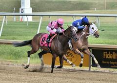 "2017-06-30 (7) r6 Victor Carrasco on #8 Vision of Green over Jorge Perez on #3 Royal Mile (JLeeFleenor) Tags: jockey جُوكِي jinete dżokej jocheu คนขี่ม้าแข่ง jóquei žokej kilparatsastaja rennreiter fantino 기수"" жокей jokey người horses thoroughbreds equestrian cheval cavalo cavallo cavall caballo pferd paard perd hevonen hest hestur cal kon konj beygir capall ceffyl cuddy yarraman faras alogo soos kuda uma pfeerd koin حصان кон 马 häst άλογο סוס घोड़ा 馬 koń лошадь photos photography md maryland marylandhorseracing marylandracing outside outdoors"