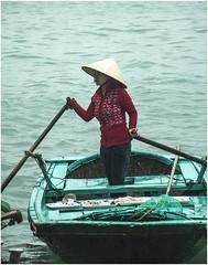 0295- GANÁNDOSE EL ARROZ DE CADA DIA - HALONG BAY - VIETNAM - (--MARCO POLO--) Tags: mares rincones bahías personas tipos curiosidades