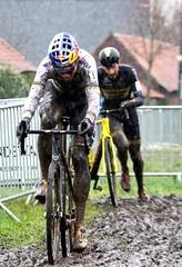 OTEG0030 van aert (babbo1957) Tags: cyclocross veldrijden otegem