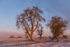 Wintermorgen (airamatina) Tags: morgen winter sonnenaufgang nikon d 750
