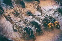 Wishin' i was fishin' (aaronlambert1982) Tags: flyfishing fly wetfly trout nymph haresear flytying flydressing macro macrophotography photoshop focusstacking nikon nikond7100