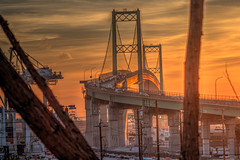 Bridge to the Sunrise #2 (Michael F. Nyiri) Tags: vincentthomasbridge sanpedro california southerncalifornia bridge trees sunrise