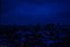 Sleepy city (WT_fan06) Tags: snow low light night bucharest bucuresti city urban skyline cityscape winter nikon d3400 dslr blue sleepy silence frozen silent cold isolated snowy freezing photography art artsy aesthetic beautiful overview landscape panoramic panorama dark darkness clouds stormy cloudy heavy atmosphere january ianuarie artistic monochrome