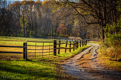 Country Road (*Ranger*) Tags: nikond3300 arboretum outdoors autumn road fence pasture field woodland afternoon longshadows