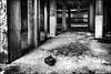 Parti en courant..../ Running out... (vedebe) Tags: usine abandonné usinedésaffectée street rue ville city urbain urbex urban decay noiretblanc netb nb bw monochrome architecture
