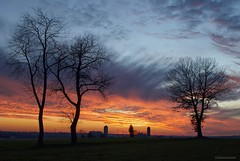 Country living.... (Joe Hengel) Tags: countryliving tree trees barn farm ephrata ephratapa pennsylvania pa field watchingthesunset sunset sun colors silhouette silhouettes horizon