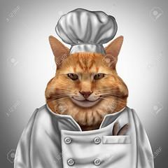 Cat Chef (jacob_proper1) Tags: cat chef hat pet cook funny gourmet kitten petfood petnutrition animal feline funnycat fun fatcat meal comical uniform culinary hungry 3dillustration appetite humor cute pusstcat conceptual concept