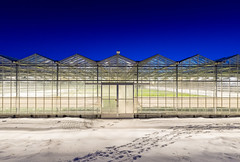 Greenhouses in Iceland (George Pachantouris) Tags: iceland north arctic cold winter snow white greenhouse ice frozen freeze nordics