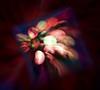 lights out (primemundo) Tags: zoom zoomburst dogwood dogwood2018 abstract lightblur blur streaks square