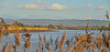 RIVER SEVERN (chris .p) Tags: nikon d610 view gloucestershire river severn winter 2018 capture framlode february england uk landscape reeds