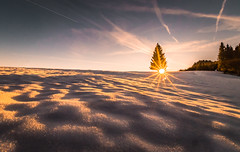 Warming sun (Toukensmash) Tags: warming sun sunray dark evening night late sunlight sunny tree trees snow snowing winter cold warm outside adventure hiking austria österreich styria steiermark sony alpha58 sigma1020 mountain high landscape wide angle hdr foreground