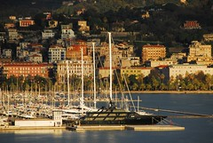 Port La Spezia (petrk747) Tags: laspezia liguria italy port harbour zachts ships sea watwr italiannavy palms trees forest buildings gardencity willa summerresidence residence outdoor saariysqualitypictures