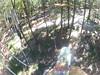 G0121316 (harleyhurricane1) Tags: line zip zipline ziplinepark dadecityflorida treehoppers centralflorida largestziplineparkincentralfl dadecity