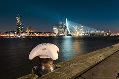 Noordereiland and Erasmusbrug, Rotterdam (mesocyclone70) Tags: bridge city cityscape citylight rotterdam holland erasmusbrug 14mm samyang river water reflections blue bluehour thebluehour orablue blauestunde skyscraper skyline
