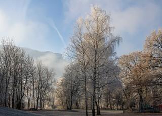 Le givre, un magicien (the frost, a wizard)