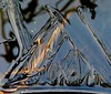(Edinburgh Nette ...) Tags: ice almonddell january18 ponds airpockets bubbles shadows abstracts icesheet ribbet
