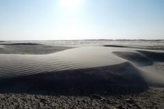 Strandformen (Vrenna) Tags: langeoog insel ostfriesland ostfriesischeinsel natur landschaft umwelt sand strand wind sandkörner flugsand düne dünenbildung panasonic