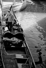 Gondoliere (R o s e n d o) Tags: transportation oar channel stripes italy waterway boat bw gondola gondolier venice