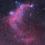IC2177 The Seagull Nebula thumbnail
