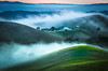 untitled @livermore, california (Paulie 潘) Tags: livermore low fog valleys rollinghills