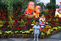 Colours of Spring (chooyutshing) Tags: coloursofspring foodoglantern painted display peoplesassociation chinesenewyear2018 lunarnewyear yearofthedog festival celebrations gardensbythebay baysouth marinabay singapore