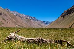 R.I.P. - San Jose del Maipo, Chile (Andre Yabiku) Tags: sanjosedelmaipo chile cl southamerica cordilleradelosandes cordillera andreyabiku yabiku