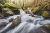 Les cascatelles de Bagnols-en-Forêt (Olivier Rocq ᕈhotography) Tags: cascades longexposure poselongue var waterfalls waterfall water rivers rivières paca bagnolsenforet blavet forest