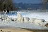 Carapace de glace (jean-daniel david) Tags: hiver glace gel nature réservenaturelle lac lacdeneuchâtel arbre blanc suisse suisseromande switzerland yverdonlesbains carapace paysage froid chemin fabuleuse