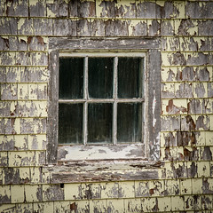 Window Feature (Katrina Wright) Tags: dsc5022 window windowwednesday paint neglect weathered texture dirt neglected