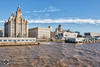 It`s all a front. (alundisleyimages@gmail.com) Tags: waterfrontliverpool royalliverbuilding cunardbuilding portofliverpoolbuilding rivermersey merseyferry clock architecture thethreegraces weather museumofliverpool redbus portofliverpool maritime liverpooltourism