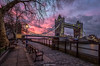 Sunrise at Tower Bridge (Behind Closed Doors Urbex) Tags: towerbridge tower bridge london seats bench water thames tree sunrise sky dramatic pink blue city
