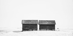 The Twins (jbarc in BC) Tags: twins sheds alberta winter minimalism minimalist sky snow roof rural country