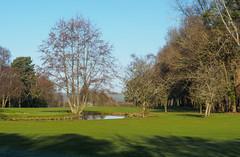 Bramley Golf Course-E2160390-Edit (tony.rummery) Tags: bramley em10 fairway golf golfcourse landscape mft microfourthirds omd olympus shadows stream surreyhills waterhazard winter england unitedkingdom gb
