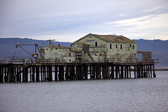 Old Pier (JB by the Sea) Tags: halfmoonbay sanmateocounty coastside california december2017 princetonbythesea pillarpointharbor princeton