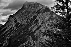 A Look Across the Side of Mount Rundle (Black & White, Banff National Park) (thor_mark ) Tags: nikond800e lookingse day2 triptoalbertaandbritishcolumbia banffnationalpark capturenx2edited colorefexpro silverefexpro2 blackwhite tunnelmountainbanffhiking hiketotunnelmountain tunnelmountaintrail mountrundle rockymountains canadianrockies southerncontinentalranges southbanffranges rundlepeaks outside nature landscape overcast mountains mountainsindistance mountainsoffindistance mountainside cloudsaroundmountains trees hillsideoftrees evergreens project365 alberta canada