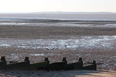 IMG_6997 (cindyincidentally) Tags: whitstable kent kentcoast britishbeach seaside seashore seasidetown