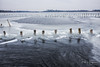 Ice @ Botshol (1) (PaulHoo) Tags: fujifilm x70 fuji nature ice water cold winter botshol holland netherlands pole stick landscape waterscape frozen 2018
