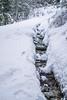 River (-mypointofview-) Tags: snow montain montains passo cereda malga fosseta bosco boschi vallata woods wood neve fresca ciapsole ciaspolata river ice water