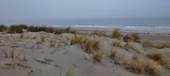 ocean view (Hugo von Schreck) Tags: hugovonschreck strand beach landschaft fantasticnature canoneos5dsr tamron28300mmf3563divcpzda010 ngc denhaag zuidholland niederlande