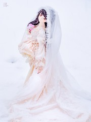 Winter bride 2 (Hokke Vageena) Tags: winter ornament ice snow bride ddh09 doll bjd dollfiedream dollheart