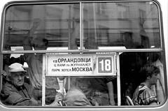 Tram (Drehscheibe) Tags: tram 35mm fllm hp5 blackwhite poeple window