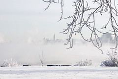 Coldest capital (beyondhue) Tags: ottawa river capital parliament canada cold mist frozen branch snow ice ontario quebec beyondhue coldest crystal frost white