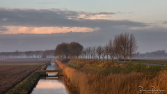 Morning light in the polder (BraCom (Bram)) Tags: bracom bramvanbroekhoven goereeoverflakkee dirksland zuidholland nederland nl ditch sloot reed riet cloud wolk bridge brug akker field refelction spiegeling netherlands holland landschap landscape tree boom winter dike dijk grass gras morning ochtend 169 widescreen water mist fog saariysqualitypictures