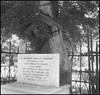 """Κομμάτι λαμαρίνας από το ατμόπλοιο """"Clan Fraiser"""", σφηνωμένο σε δέντρο του Τινάνειου κήπου, μετά τον βομβαρδισμό του και την έκρηξη που ακολούθησε τη νύχτα της 6ης προς την 7η Απριλίου 1941. (Dionysis Anninos) Tags: piraeus πειραιάσ pirée grèce greece ελλάδα пиреос гърция piräus griechenland piræus grækenland grikkland pireo grecia hellas grecja kreikka пирей греция grécia пиреј грчка görögország pire yunanistan řecko pireu πειραιεύσ"""