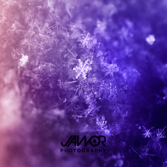 Snowflake-Sunrise (Jawor Photography) Tags: jaworphotography nature natural naturephotography naturelover weather snow snowflake snowing sunrise sunset winter cold ice frozen frozenwater frozensnow macro macrophotography macrolens evening